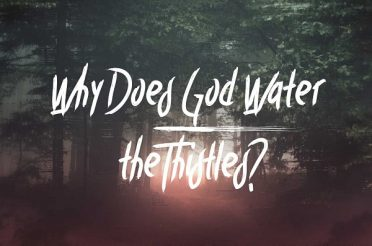 Why Does God Water the Thistles?